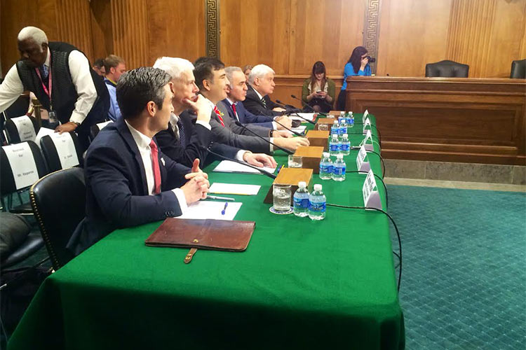 'Russian Aggression in Eastern Europe': Senate Subcommittee Meets to Discuss Ukraine Conflict
